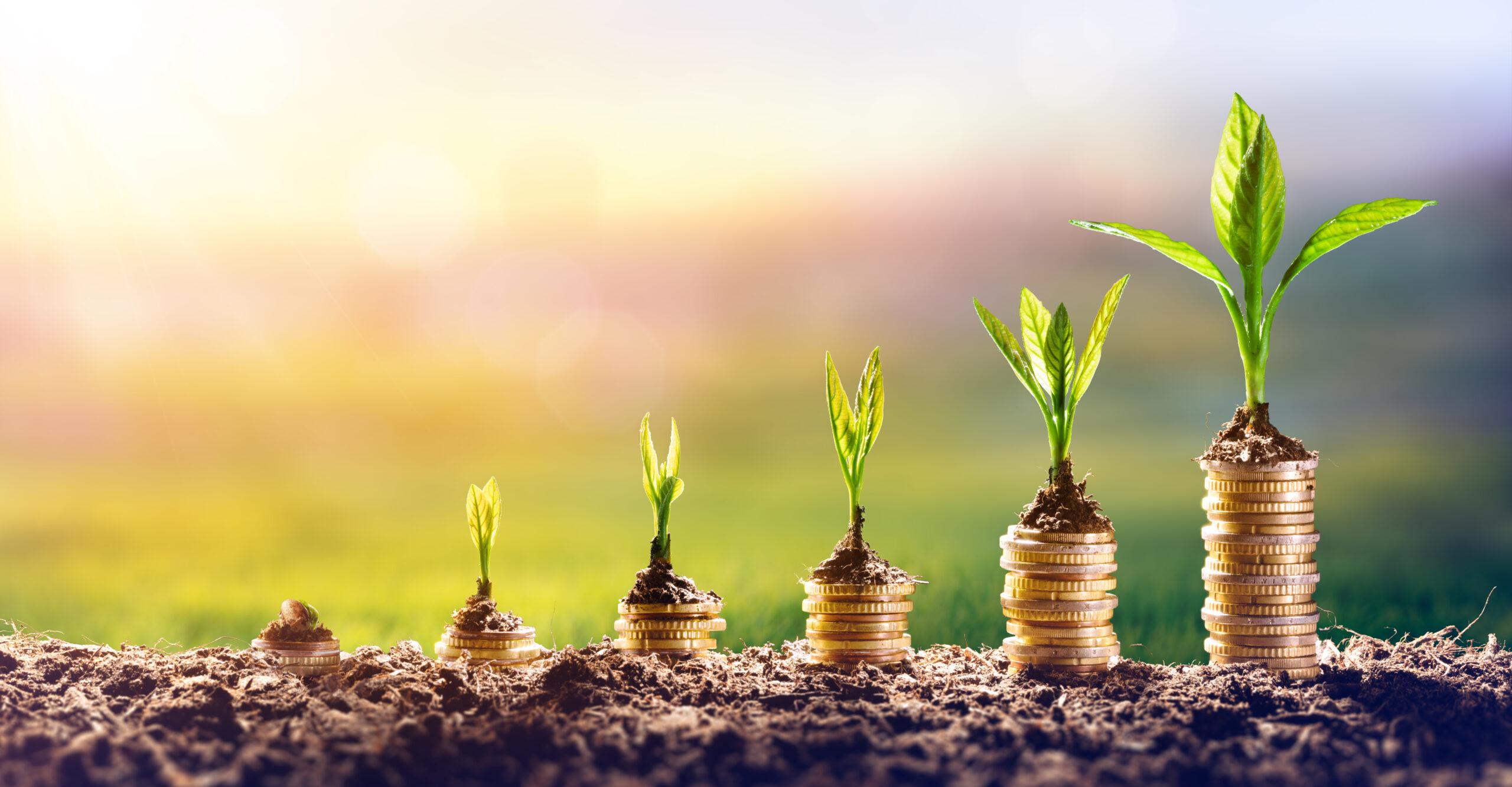 investment for disabled entrepreneurs